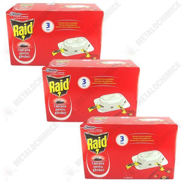 Pachet 3 cutii - Raid, Capcane pentru gandaci, furnici, 3 x 6buc/cutie
