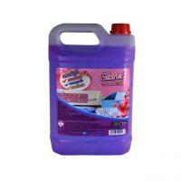 cloret carpet expert detergent covoare canapele si mochete 5 l